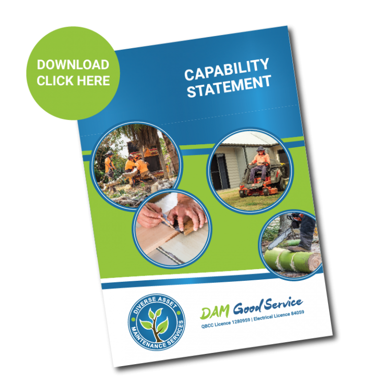 Diverse Asset Maintenance Services Mackay Capability Statement
